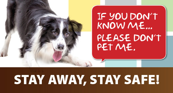 Photo of a dog with text: If you don't know me, please don't pet me.  Stay away, stay safe