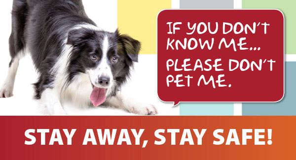 Stay away from animals you don't know, and stay safe!