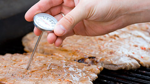 Photo of a person checking temperature of meat