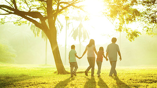 Photo of family holding hands walking through a park