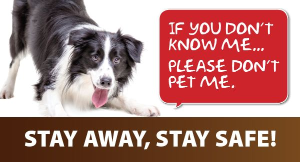 Rabies Awareness banner - stay away, stay safe!